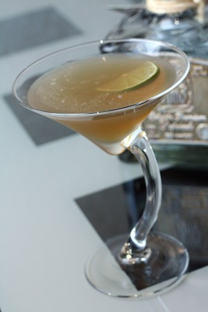 Tommy's Margarita b1