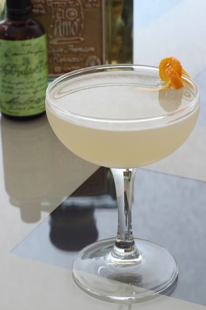 Turza Cocktail b1